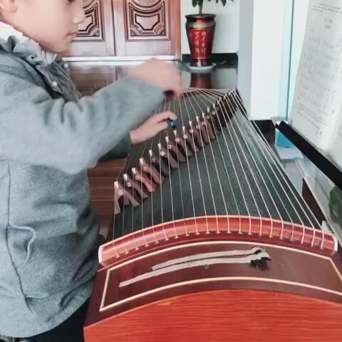 音乐##宝宝#康定情歌# - 宝宝视频 - 竹雨古筝的美拍