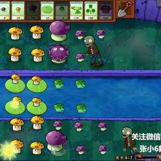 视频教程 单机游戏解说 植物大战僵尸 第三十七期#单机游戏##游戏解说##游戏#喜欢就订个阅呗!😍😍😍