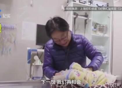 #感动#安乐死18岁爱犬,阿姨痛哭来世相会❤