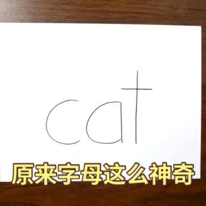 小猫小狗原来可以这么画!😍😍😍手残党必备, 有喜欢养宠物的吗?听说喜欢养宠物的人都善良。