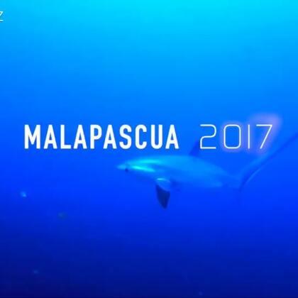 菲律宾 妈妈拍丝瓜岛 潜游#水肺潜水##大疆航拍##鲨鱼#