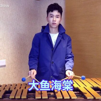 大鱼海棠,#马林巴木琴#加颤音琴的版本,希望大家喜欢哦!#U乐国际娱乐##乔峰Andrew#