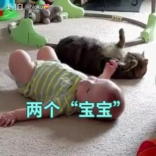 #宠物#和#宝宝#普及一下,只有吃生肉的猫咪体内才会有弓形虫,通常会通过排便传播。如果你家猫咪只吃猫粮和零食和你不是按顿吃猫屎的话,是不会传染弓形虫的。呼吁大家,千万不要因为有了宝宝就不扔掉宠物,它们也是你的宝宝!万一真的怀孕,可以托朋友帮你养猫,或者家人帮你铲屎,都没有问题。