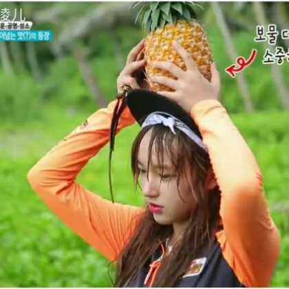 发现菠萝之后反应敲可爱的潇妹,还来了一段ppap,真的是没办法不喜欢的孩子啊~#程潇##孔明##丛林法则#