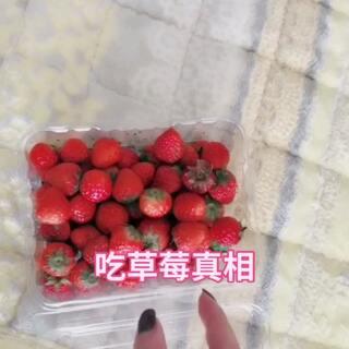 #搞笑##吃秀#然并卵每次吃美食每次都有个搅屎棍子...还把含进去的草莓吐出来😡😡😡