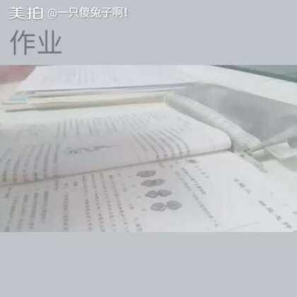 #写作业ing#这是一条很无聊的视频📝