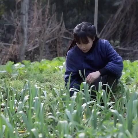 【李子柒美拍】#古香古食# 小孩小孩你别馋,过...