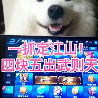 哈哈哈哈哈哈!哈哈哈哈哈!哈哈哈哈哈!你有一只天下无敌的狗抓!#精选##宠物##王者荣耀#