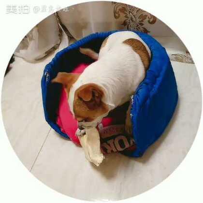 【霹雳娇娃丶美拍】01-25 08:23