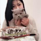 ➕V:dangaoxiaogongzhu,巧师傅➕焙尔妈妈两大甜品巨头的总代,甜品持续上新中!招上进代理! 因为馋 下大雪都要去拿快递🤣#吃秀##我要上热门#