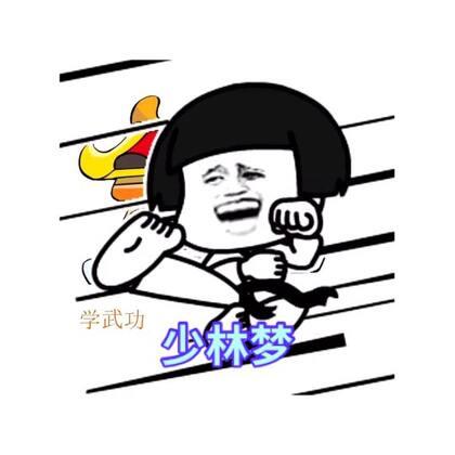 从小我心里有个少林梦!#我的少林梦手势舞##精选##搞笑#