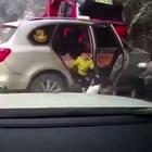 #囧囧趣闻#🙏🏻🙏🏻🙏🏻雪天开车的人注意安全啊!看的胆战心惊………