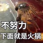不努力下面就是火锅#精选#@美拍小助手