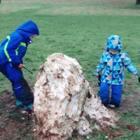 Snow.#雪##英国#