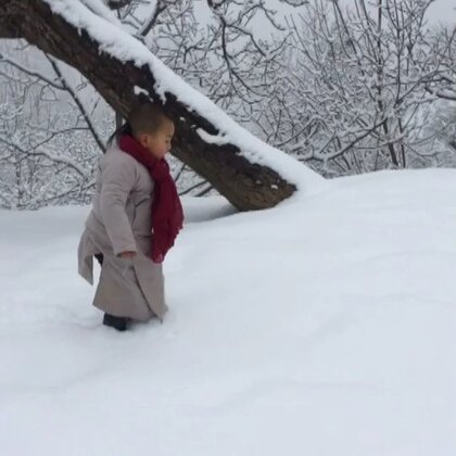 终南山的积雪,是城里见不到的。