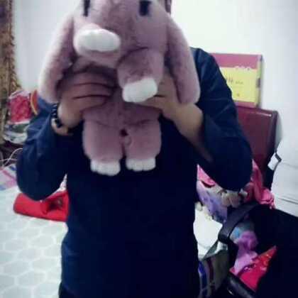 #会说话的兔兔##《最美情侣》#