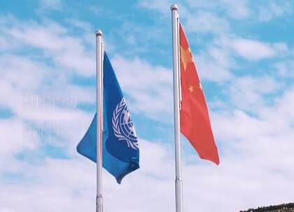 自1990年首次向联合国维和行动派遣军事观察员至今,中国已累计派出维和人员3.5万余人次,先后参加24项维和行动,维和人员数量居安理会五个常任理事国之首;同时,中国是联合国维和事业第二大出资国。目前,中国共有2500多人正在执行维和任务,其中包括155名警察、34名军事专家以及2300多名维和军人。