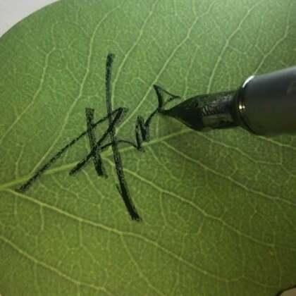 林洁,你的签名!需要的多点赞转发哦!