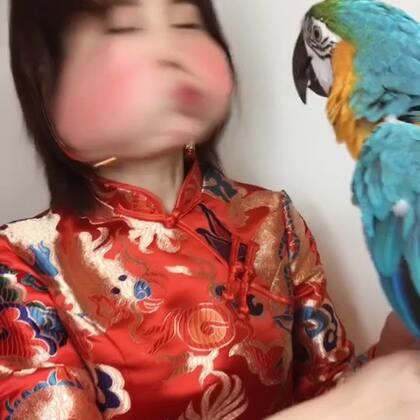 #春节瘦瘦舞##魔法涂鸦#听说我家的鹦鹉可以带来财运,点赞的今年都会发发发发