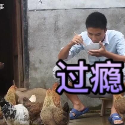 #农村小伙#快刀一挥,做了什么好吃的,连鸡和#狗狗#都抢着吃#乡村美食#