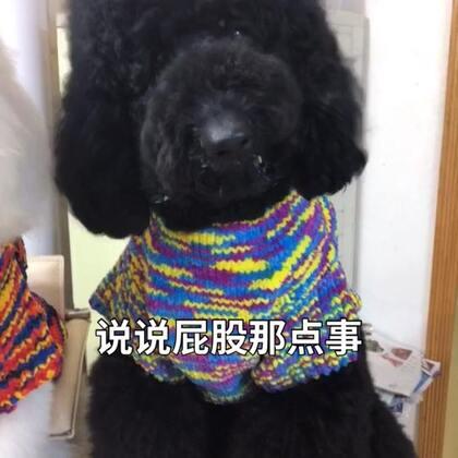 @美拍小助手 @宠物频道官方账号 #屁股有多懒##宠物##精选#