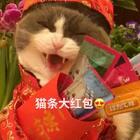 除夕夜快乐!🎉提前祝大家新年新气象👏🏻成绩不挂科😊事业一路飙😍身体熊一样🤓皮肤蛋一样😄像喵妹我一样😊有最爱的人陪着🌞有最爱的猫条吃❤#宠物##萌萌祝福舞##萌宠拜年秀#