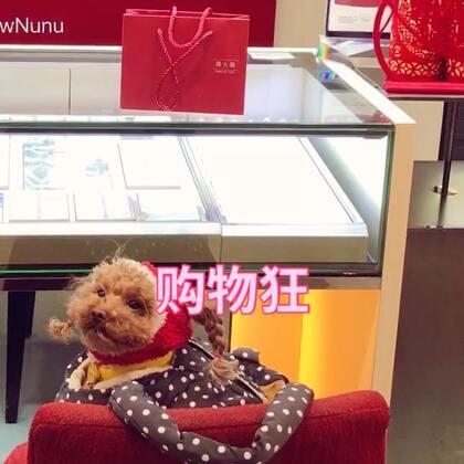 #熊妹购物狂##热门##宠物#@美拍小助手 🎁麻麻给我买了新年礼物