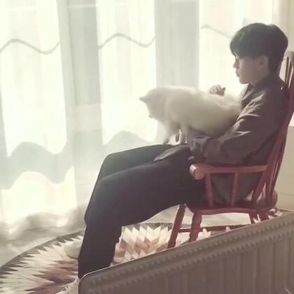 #宠物##费启鸣#