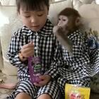 安安和馨都长大啦…安安还是这么宠着馨#宠物##宝宝#@美拍小助手