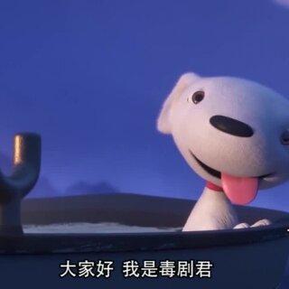 京东狗年贺岁大片《JOY与鹭》,毛绒绒的白软软的JOY有萌到你吗?