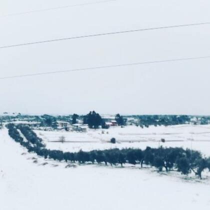 2012年的时候罗马下了一场雪。时隔六年,罗马又迎来了一场雪!#宝宝##暖萌两兄妹eric&emy##日常#