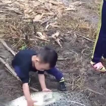 鱼:给你一嘴巴子玩玩,怎么还哭了?😂😂😂