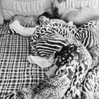 很好奇自己睡觉时什么样,于是就在房间里安了监控……@美拍小助手 #精选##搞笑##睡着后发生的怪事儿#