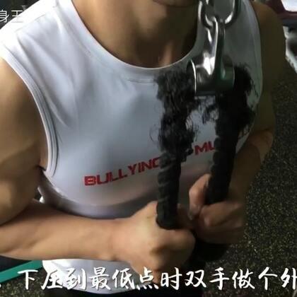 #运动##健身教程#健身器械教学,绳索下压,训练肱三头肌👉🏻@小圣教练