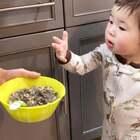 """""""嗷嗷待哺""""系列😂😂😂 紫菜燕麦土豆粉蛋花汤……#宝宝# 最近胃口很好啊!"""