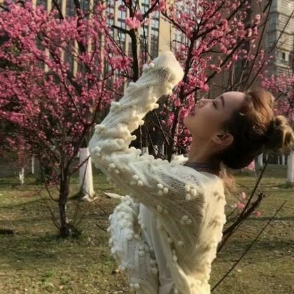 你梨精心为你排练了一个舞蹈😐 #离人愁##有戏#