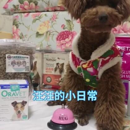 店铺活动还在进行中 狗粮是汪汪爱吃的 奶香味的!牙口乐帮助清除和改善口腔细菌形成 除口臭 。 【准备明天给汪汪做绝育手术了 希望汪汪一切顺利 😟 】 #宠物# @喵喵儿的店