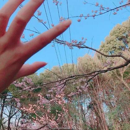 【幽yoNi美拍】03-12 00:01
