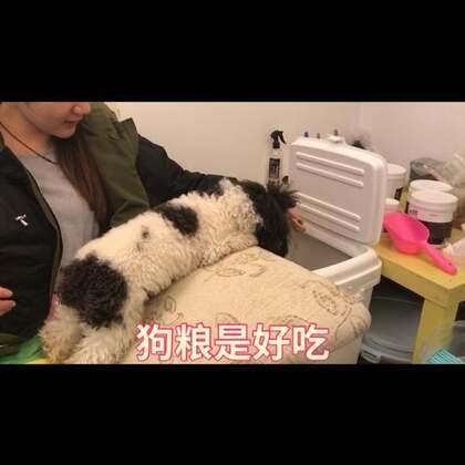 有个神经病老妈的狗生是一种怎样的体验?#精选##我要上热门@美拍小助手#