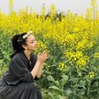 生活像花儿一样灿烂