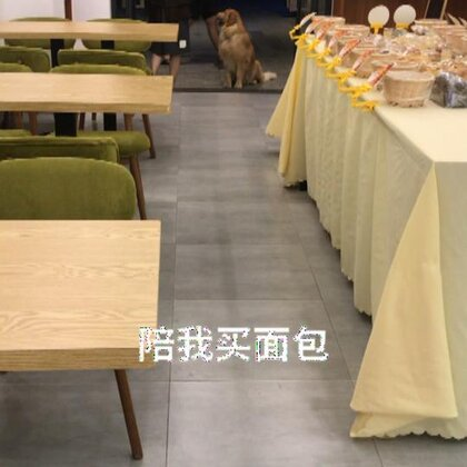 面包店的美女好可爱啊!看夏天定门口等我还说帮我看着狗。#宠物##热门##金毛#