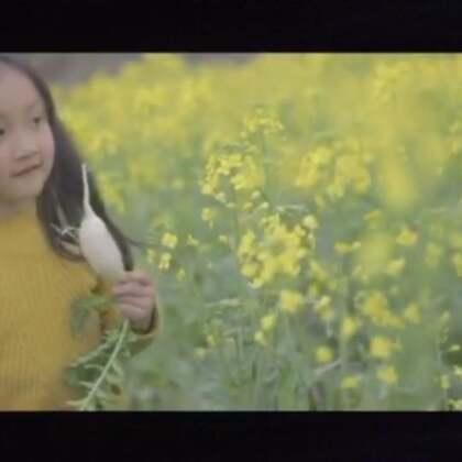 微电影《树上的星星》拍摄花絮🍀#宝宝##微公益片##小哪咤#@宝宝频道官方账号 @美拍小助手 @玩转美拍 @小银星城东三中心 @小冰