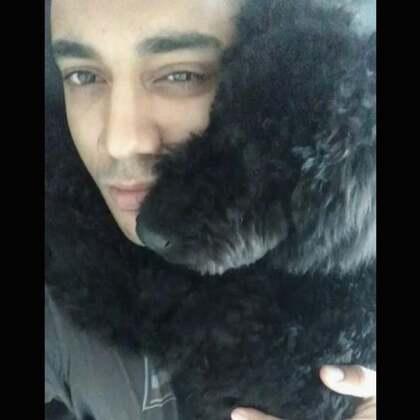 ZuZu你好可爱🤗#狗狗##宠物狗狗#@Naomi&ZuZu