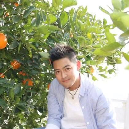多想做你手中那颗橙 伴君走完余下这半生