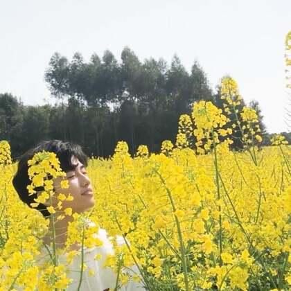 待到山花烂漫时,🤔#精选##音乐##搞笑#