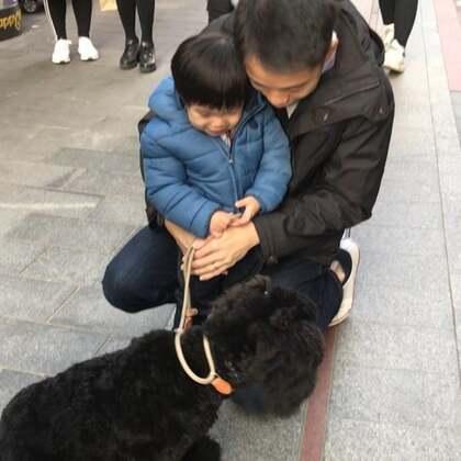 BENGIE 在吴江路🙌🏾 微信:bengie666 #宠物#
