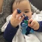 #宝宝##购物分享##荷兰混血小小志&柒#柒的这款牙胶粉色的暂时缺货,目前只有蓝色,女孩用也好看!