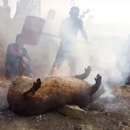 二月初二龙抬头,全村人杀猪祭山神,同吃一道菜:火烧肉拌豆粉!你们二月二有什么特别的风俗吗?比如剪头发😍😍😍😍😍#云南##美食##滇西小哥#