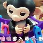 猴子同樂會!汝汝的書包竟然... #寶寶#