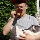 和猫晒太阳 vs 和狗晒太阳